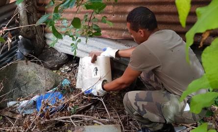 Dengue à La Réunion: Recrudescence du nombre de cas de dengue durant la première semaine de février