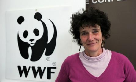 Guyane: Isabelle Autissier opposée au projet Montagne d'or et aux forages Total