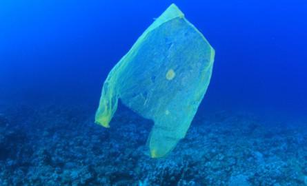 Environnement : La Polynésie veut interdire les sacs en plastique pour mars 2018