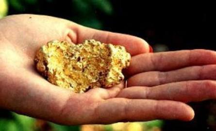 Guyane: Le Gouvernement assure être vigilant sur les impacts environnementaux du projet minier de la Montagne d'Or