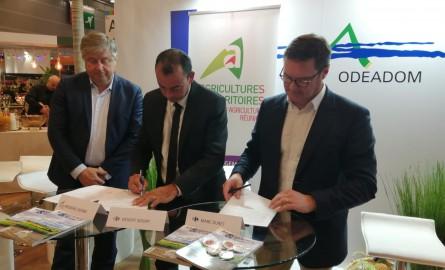 Salon international de l'Agriculture: La Chambre d'Agriculture de La Réunion et Carrefour signent une convention pour créer une filière de sucre bio