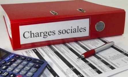 Economie en Outre-mer : Des exonérations des cotisations sociales plus bénéfiques aux employeurs implantés en Outre-m