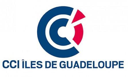 CCI Îles de Guadeloupe: Patrick Vial-Collet devient le nouveau président