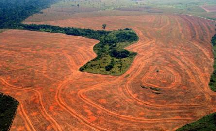 Climat : Réunion de l'ONU au Brésil en pleine polémique sur l'Amazonie