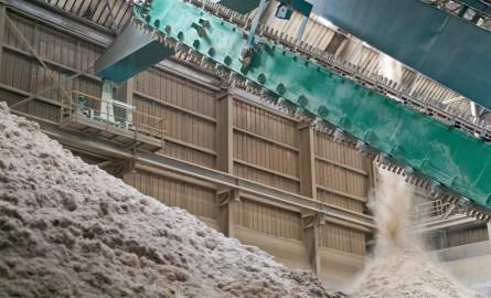 Énergies en Guadeloupe : La Centrale Albioma Caraïbes autorisée à se convertir à la biomasse