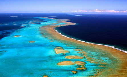 Biodiversité: Les diverses pistes de l'Australie pour réparer la Grande barrière de corail