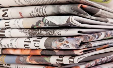Revue de presse numérique du 23 mars: Affaire Brigitte Bardot à La Réunion, Dengue à Papeete, Baptème d'un jaguar en Martinique